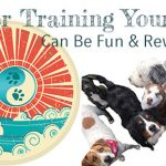 Clicker Training, Beach Dog Doggie Daycare, Newburyport