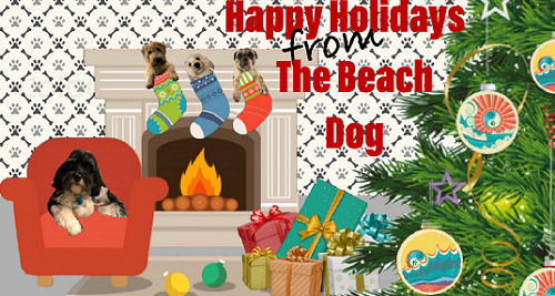 Keep your dog safe, Beach Dog Daycare