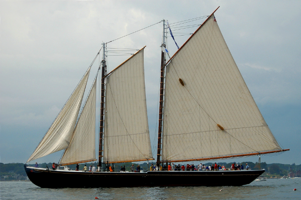 Tall Ships, Newburyport