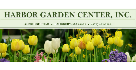Harbor Garden Center, Salisbury MA