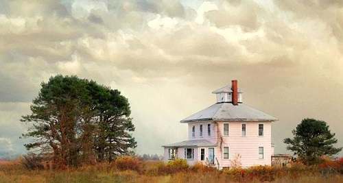 Plum Island Pink House, Newburyport MA by Damian Turco
